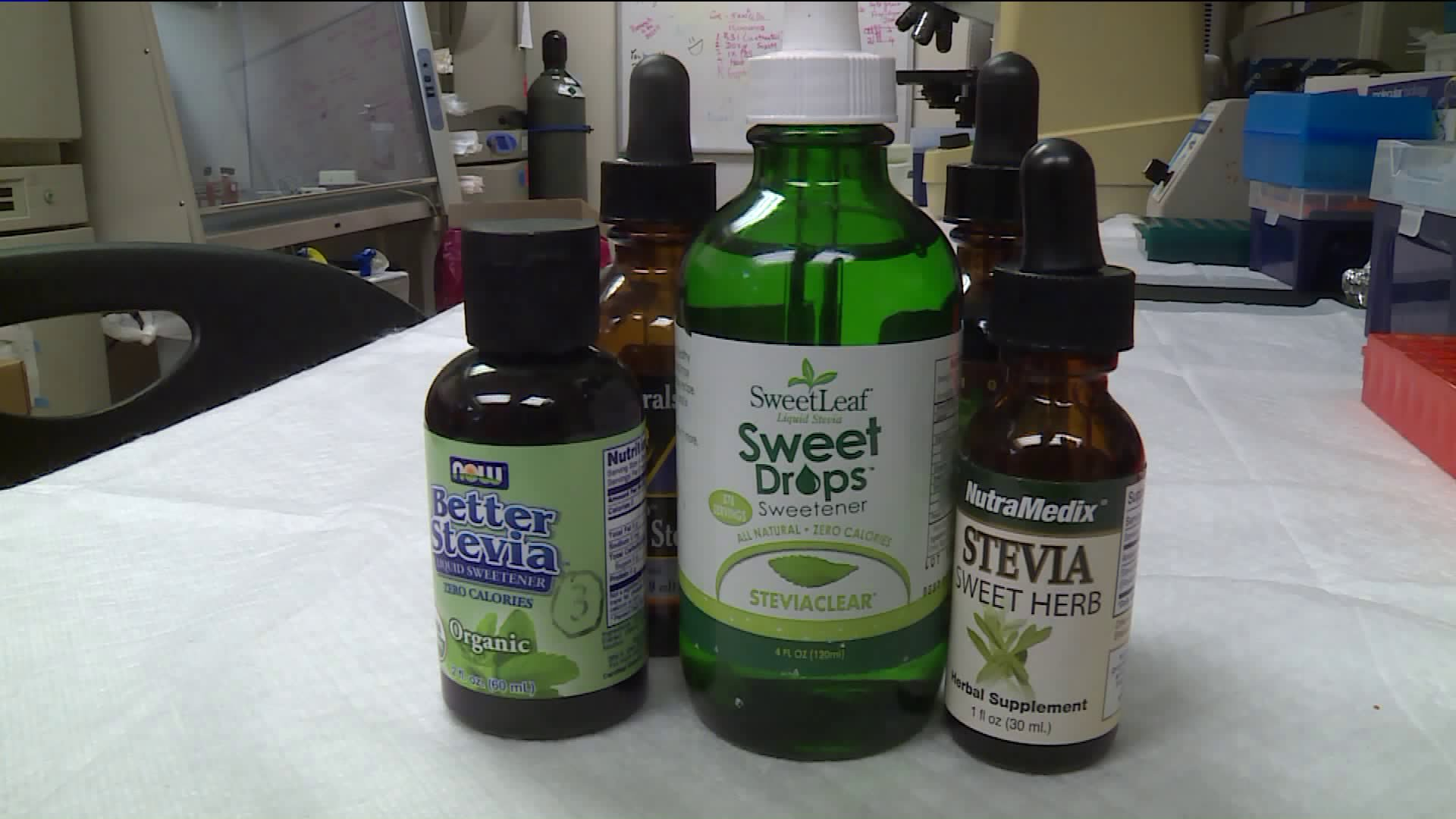 Reasons To Consider Using Stevia For Diabetes Instead